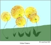 yellowflowers